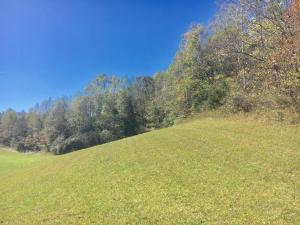 Little Valley Rd, Tazewell, TN 37879
