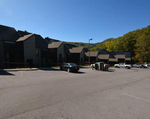 1155 Upper Alpine Way, 202, Gatlinburg, TN 37738