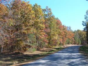 White Oak rd. lot on left