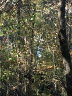 Lot 61 Overlook Trail, Maynardville, TN 37807