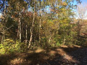 Lot 63 Overlook Trail, Maynardville, TN 37807