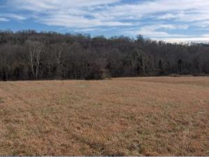 Lot 36 Creswell Rd, Seymour, TN 37865