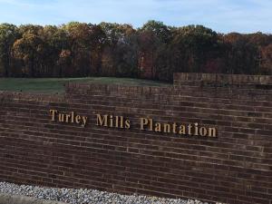 Turley Mills Drive, Rutledge, TN 37861