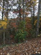 Ridge Circle Rd, Andersonville, TN 37705