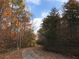 Lot 186 Moonstone Lane, New Tazewell, TN 37825