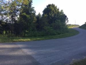 Lot 567 Whistle Valley Rd, New Tazewell, TN 37825