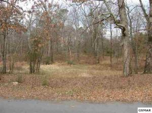 Lot 14 Flatwood Road, Sevierville, TN 37876
