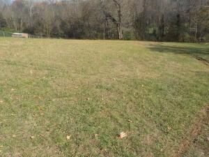 Ritz View Drive, Blaine, TN 37709