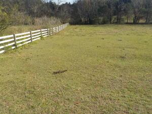 Old Rutledge Pike, Blaine, TN 37709