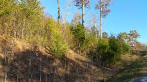 Lot 799 Russell Brothers Rd, Sharps Chapel, TN 37866
