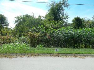 L-3 Wolf Peak Lane, Heiskell, TN 37754
