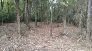 215 Chatuga Way, Loudon, TN 37774