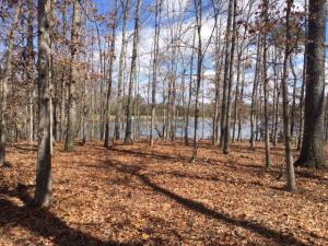 Mallard Point, Crossville, TN 38571