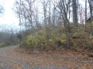 Deer Run Drive, Louisville, TN 37777