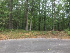 1405 Echota Lane, Mooresburg, TN 37811