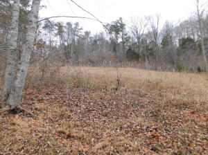Flat Land Lane, Speedwell, TN 37870