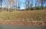 Lot 17 Lakeview Drive, Harriman, TN 37748