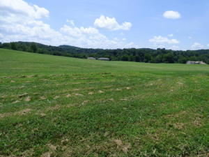 2028 River Mist Circle, New Market, TN 37820