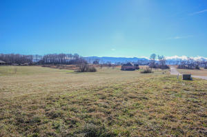 530 Doc Norton Rd, Walland, TN 37886