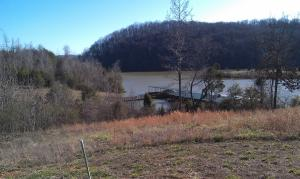Lot # 57 Blue Heron Bluff, Harriman, TN 37748