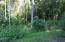 Reservoir Rd, Andersonville, TN 37705