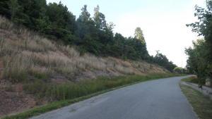 Chimney Rock Rd, New Tazewell, TN 37825