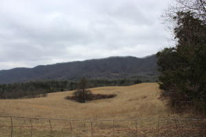Davidson/Dalton Ridge Rd, Thorn Hill, TN 37881