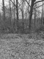 Nice wooded lot in established neighborhood. Convenient Location.