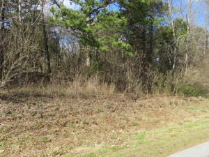 Chogi Lane, Lot 11, Loudon, TN 37774
