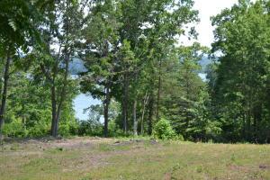 Lake Shore Drive, Rutledge, TN 37861