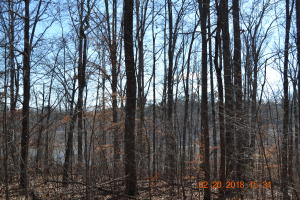 Cherokee Cove, Rutledge, TN 37861