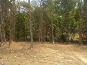5.67 Acres Old Rutledge Pike, Blaine, TN 37709