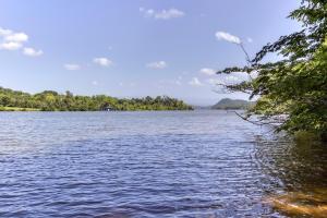 Didodi Trail, Vonore, TN 37885