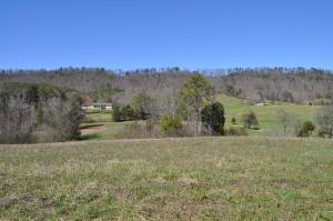 Mockingbird Rd, Seymour, TN 37865