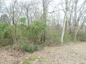 Lot 139 Skyline Ave, New Market, TN 37820