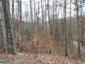 Lot 30 Whippoorwill Hill Way Way, Sevierville, TN 37862