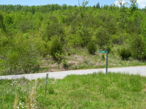 Lot 726 Clearwater Rd, New Tazewell, TN 37825