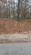 Great wooded flat lot.