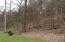 Mid-area wooded area.