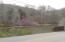 Looking toward property from road near bridge.