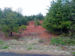 Lot 1- R Ownby Drive, Kodak, TN 37764