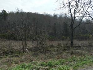 691 Little Creek Rd, Harrogate, TN 37752