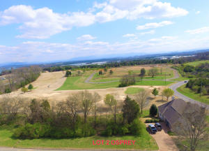 280 Osprey, L2 Circle, Vonore, TN 37885