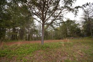 175 Ridgebark Lane, Lenoir City, TN 37772