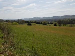 Pinto Ridge Drive, New Market, TN 37820