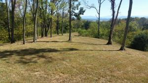 3616 Nina Hills Rd Off Rd, White Pine, TN 37890