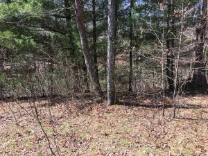 Woods Hollow Lane, Crossville, TN 38571