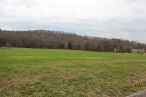 2016 River Mist Circle, New Market, TN 37820