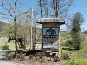 Lot 3 Butler Branch Rd, Sevierville, TN 37876