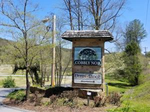 Lot 4 Butler Branch Rd, Sevierville, TN 37876